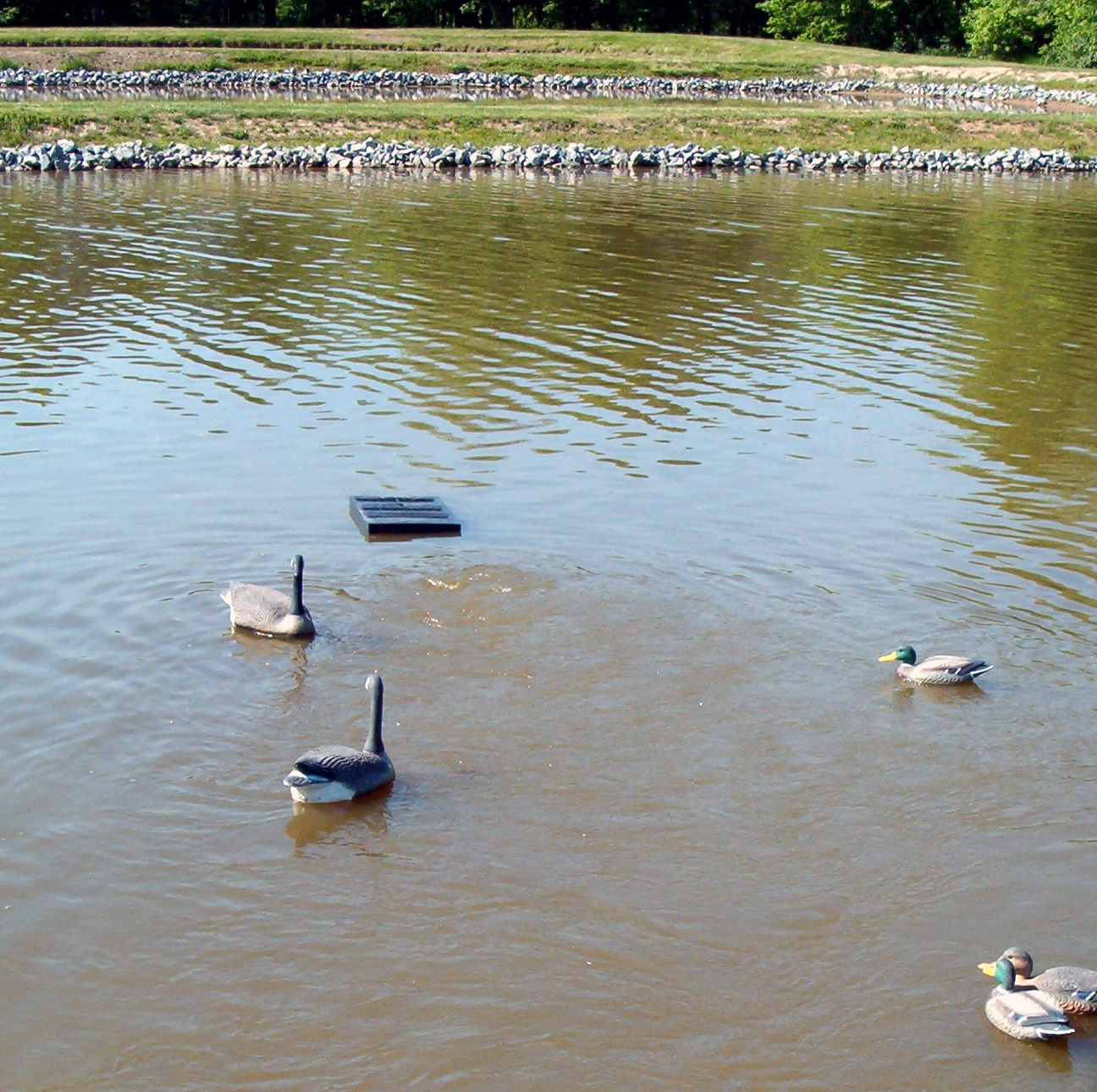 asco maritiem-floating F2400_circulator_pond